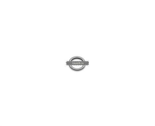 Кольцо уплотнительное топливной трубки - фото 7463